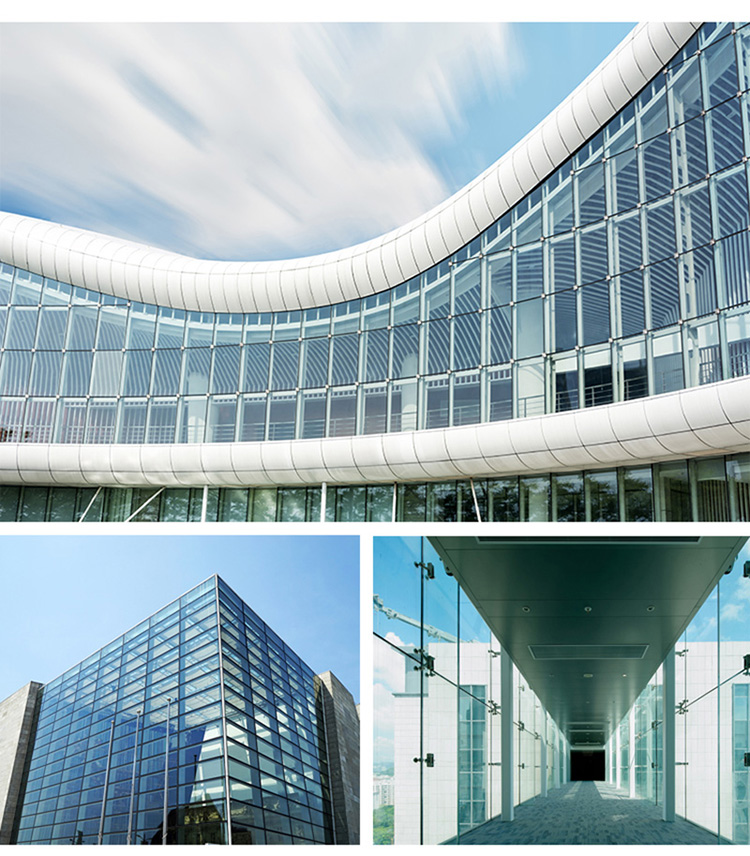 Exterior Curtain Wall : High quality commercial building point support glass